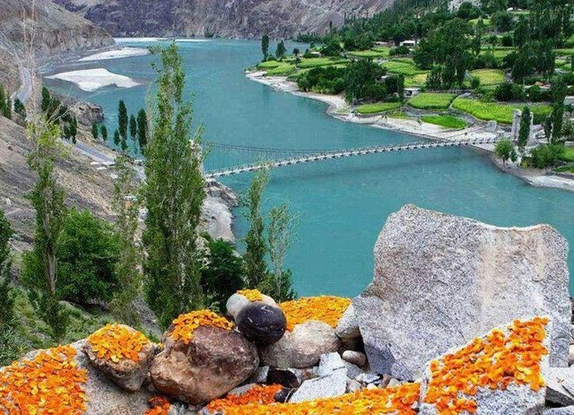 Drying Apricots in Hunza Valley, Gilgit Baltistan