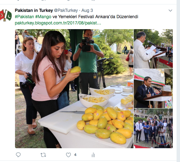 Event shared by Pakistan Embassy's social media
